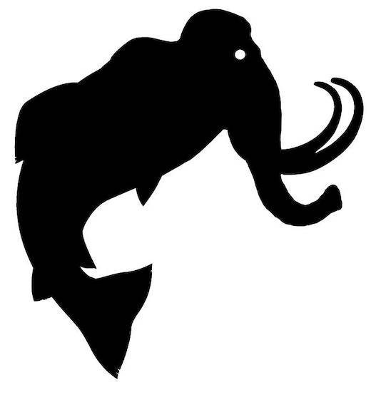 FishMammoth .com